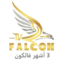 Subscription § Falcon § Three months